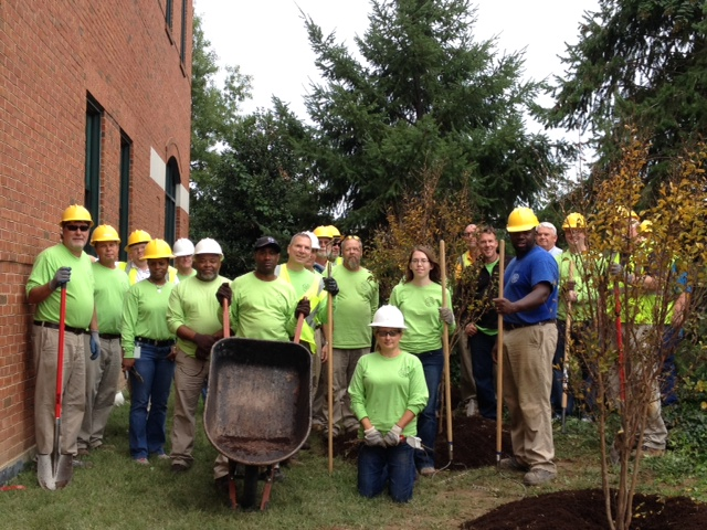 100th tree planted